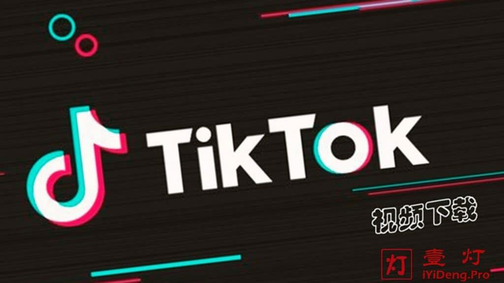 TikTok Downloader v3.3.3 破解版 – 抖音国际版TikTok视频下载器   高清无水印视频保存